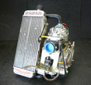 Rotax FR125 kart racing engine